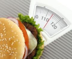 amapur Diät: Der Diät Testsieger unter der Lupe