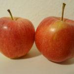 Zwei rote Äpfel der Sorte Gala