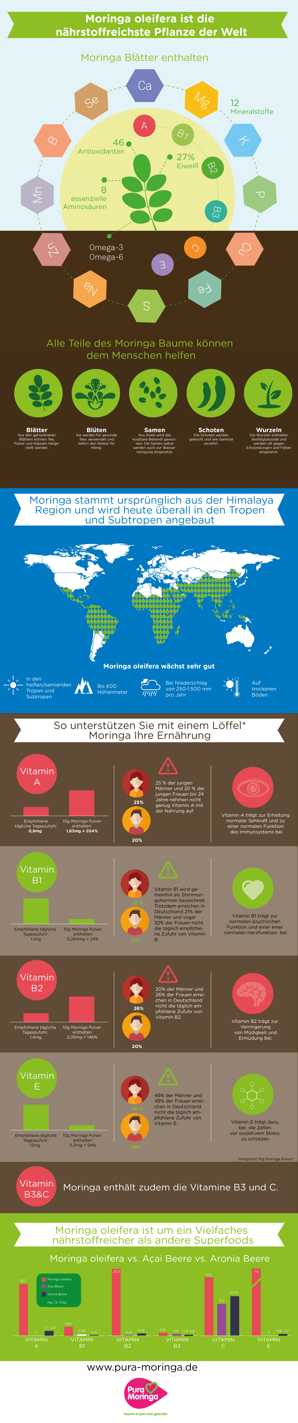 Moringa Infografik: Moringa oleifera ist die nährstoffreichste Pflanze der Welt