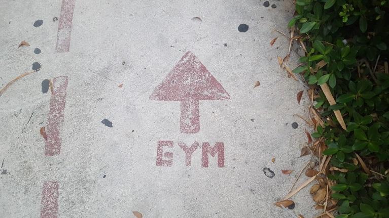 So findest Du den richtigen Schuh für das Fitnessstudio (garantiert)