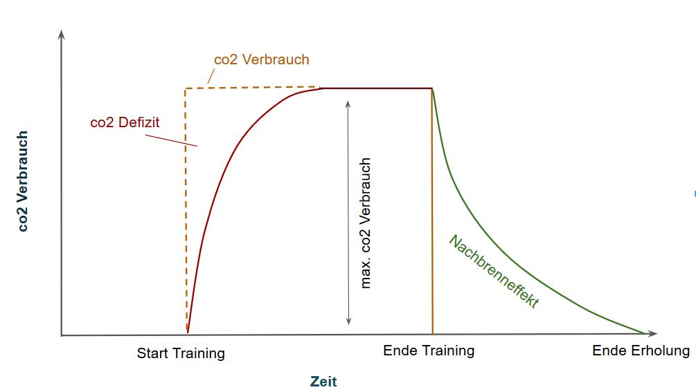 nachbrenneffekt-co2-verbrauch-vor-training-nach-training-grafik